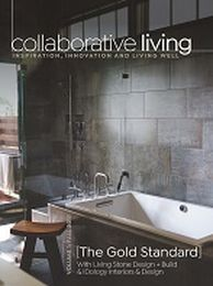 Idology in Carolina Home and Garden Magazine