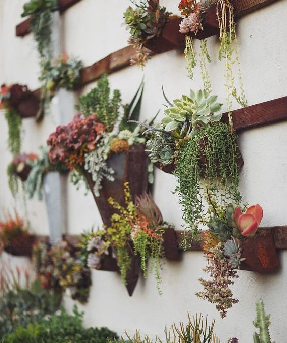 Ideas for Infusing Nature Into Your Asheville Home